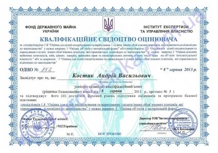 Кваліфікаційне свідоцтво оцінювача Костика А.В. за спеціалізацією 1.8. (МФ) 2013 р.